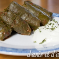 Feuilles de vigne végétariennes à la chypriote (κουπέπια νηστίσιμα)