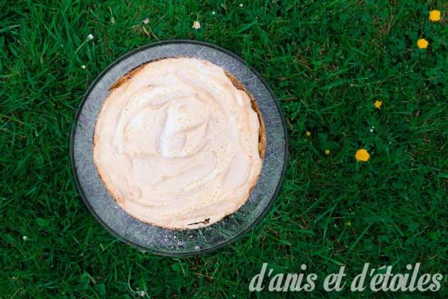 tarte-pomme-rhubarbe-meringue11